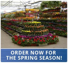 Order Now for Spring Season