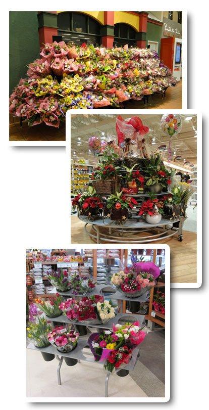 Indoor Floral Displays